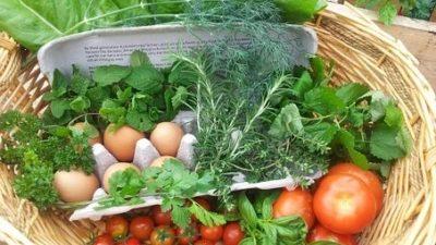 Nachhaltigkeit auf Reisen: Einkaufen/ Essen gehen
